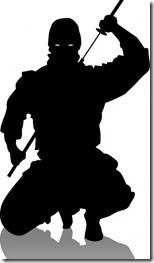 4320614-ninjashilloutte
