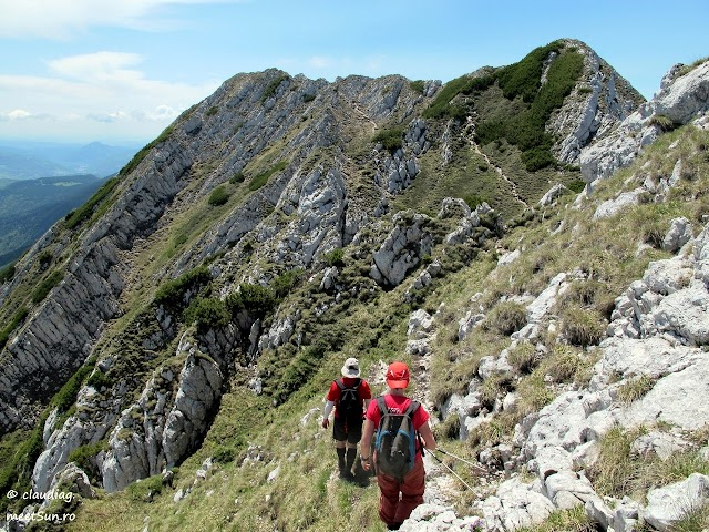 Piatra-Craiului-Sudica-5108-rw.jpg