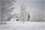 Teufelsmoor - Winterimpression
