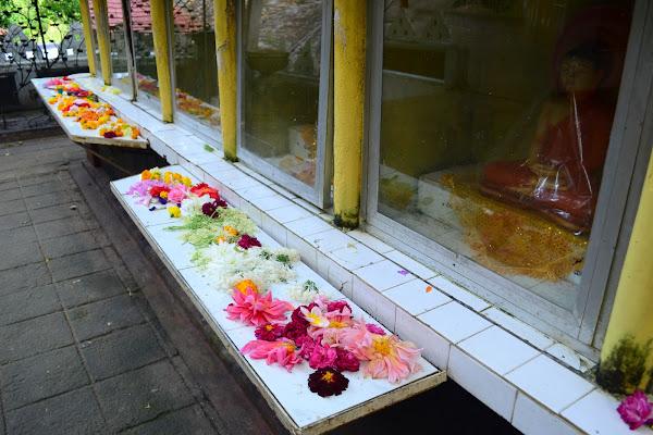 Цветы и подношения, Dowa rock temple, Шри Ланка