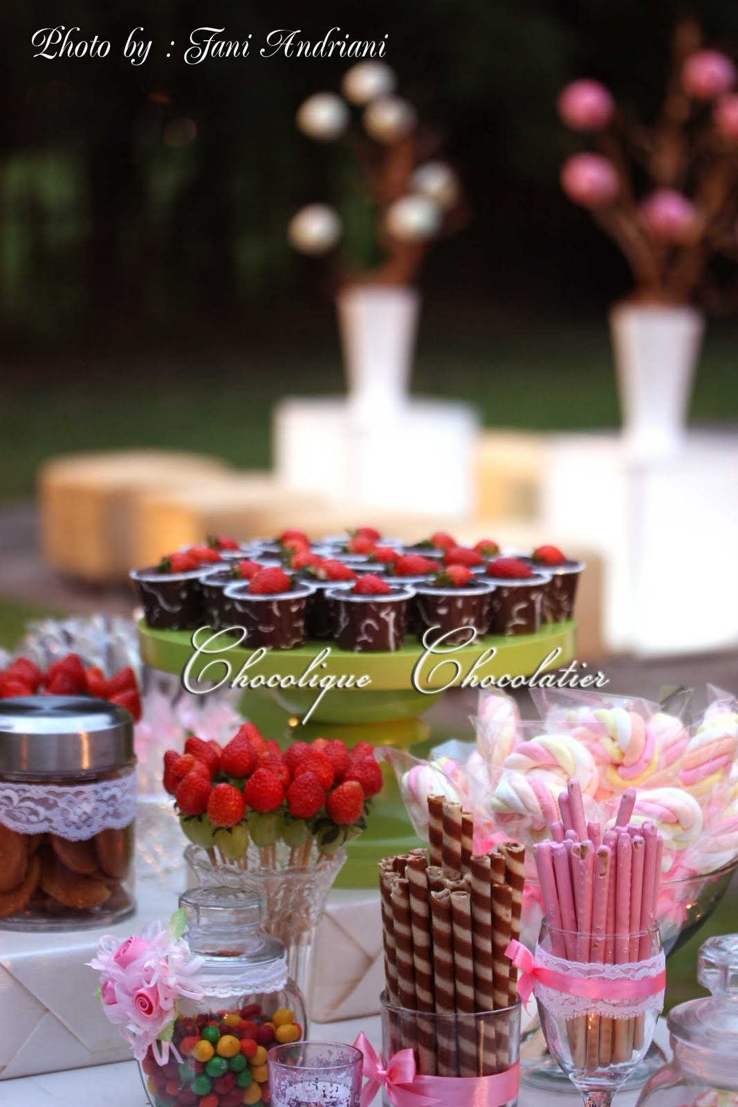 Candy Bar for Hans & Uvicks