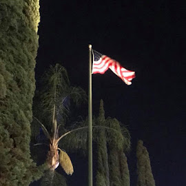 Flag by Linda Kocian - City,  Street & Park  Night (  )