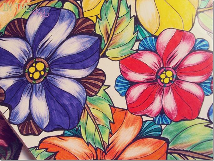 colorindo05