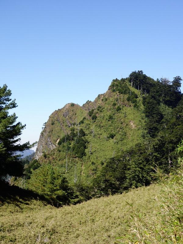 2013_1126-1129 鹿林山-1_050