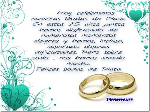 bodas de plata 3