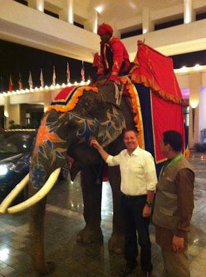 Мартин Брандл со слоном у отеля на Гран-при Индии 2011