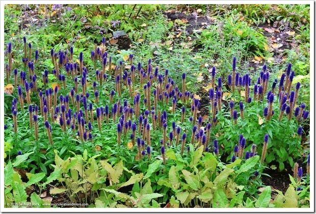 150911_AlaskaBG_blue_spires