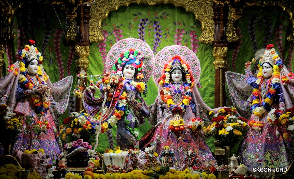 ISKCON Juhu Sringar Deity Darshan 11 Feb 16 (1)