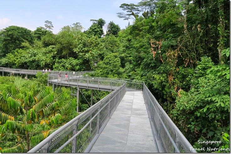 新加坡花柏山 (80)