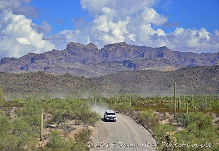 Organ Pipe NM1