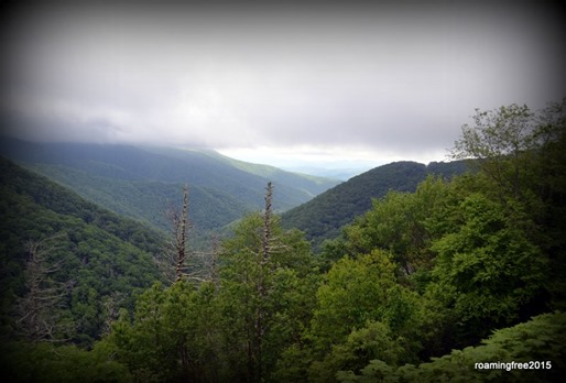 A cloudy day in the Blue Ridge Mountains!