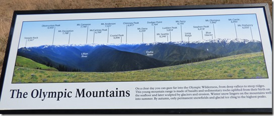 Olympica Mountains Info Board, Hurricane Ridge