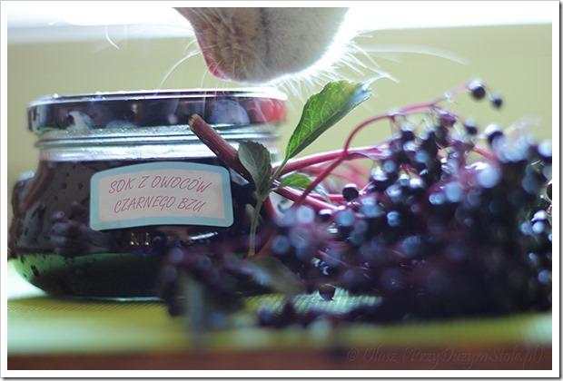 Przy dużym stole: Sok i syrop z kwiatów czarnego bzu