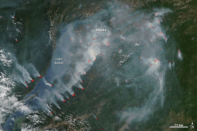 On 27 July 2015, the Moderate Resolution Imaging Spectroradiometer (MODIS) on NASA's Aqua satellite acquired this view of smoke from fires burning near the shoreline of Lake Baikal in southern Russia. Actively burning areas, detected by the thermal bands on MODIS, are outlined in red. Lake Baikal—the largest freshwater lake by volume in the world—has seen water levels drop in recent months, according to news reports. As a result, drying peat reserves around the lake could lead to more summertime wildfires. Photo: Jeff Schmaltz / LANCE/EOSDIS Rapid Response