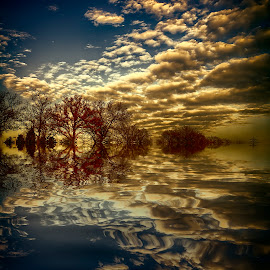 landscape reflection by Egon Zitter - Digital Art Places ( clouds, reflection, tree, waterscape, sunset, landscape )