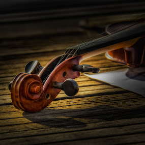 Beautiful Ending by Rose Roses - Artistic Objects Musical Instruments ( Music, Instrument, Contest,  )