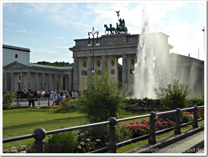 P1010143_Brandenburger Tor