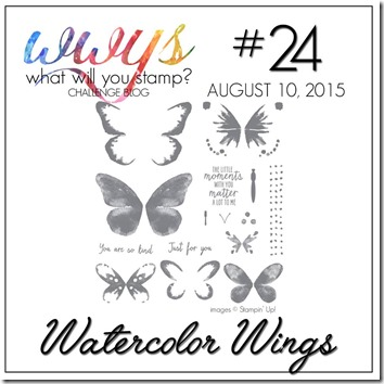 WWYS 24