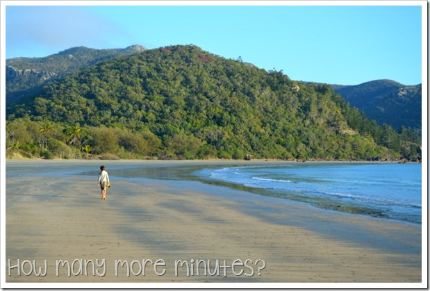 Sunrise With the Wallabies, Cape Hillsborough NP | How Many More Minutes?