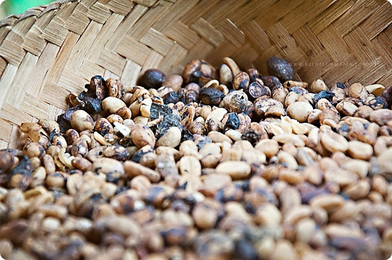Coffee-beans-(1)