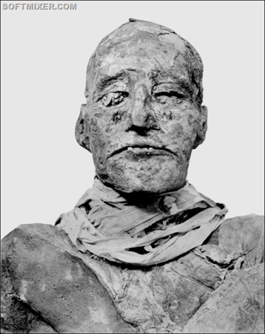 480px-Ramses_III_mummy_head