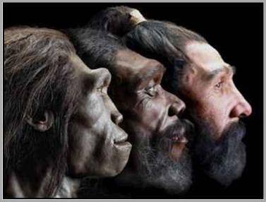 evolução-homem