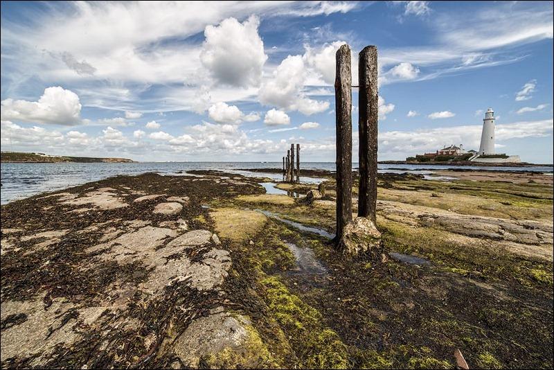 St Marys Lighthouse; Coast
