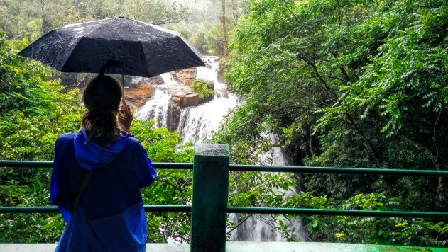 Admiring the beautiful Sirimane Falls in rain