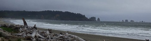 High Surf in La Push