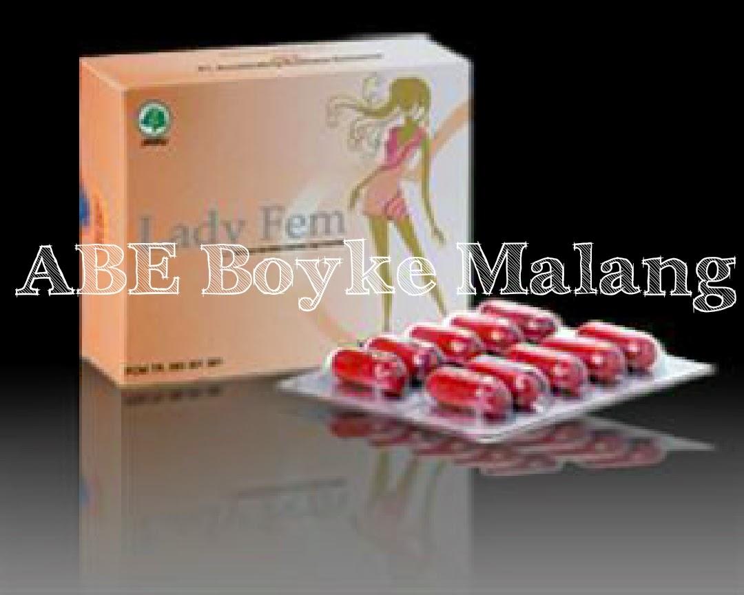 Abe Ladyfem Kapsul Herbal Daftar Harga Terbaru Dan Terupdate Indonesia Vitahealth Prostate 30 Promo Rp240000 Box 1 Berisi