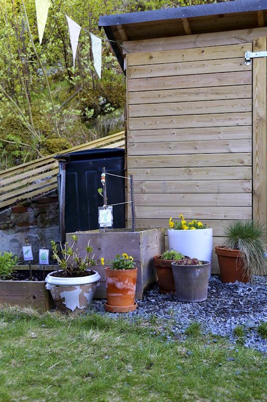 Ut i vår hage1