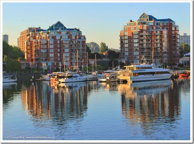 Condominium complex water garden, Victoria, BC