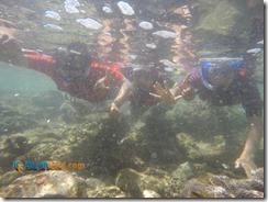 Snorkeling Pantai Nglambor Kisah Foto Blog02