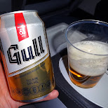 Gull beer - the local Icelandic beer in Reykjavik, Hofuoborgarsvaeoi, Iceland