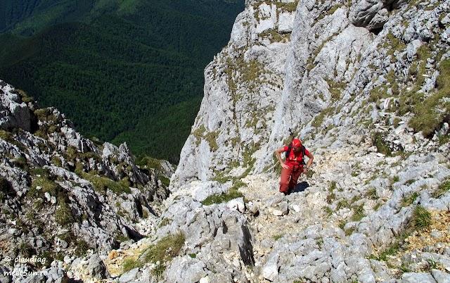 Piatra-Craiului-Sudica-5078-rw.jpg