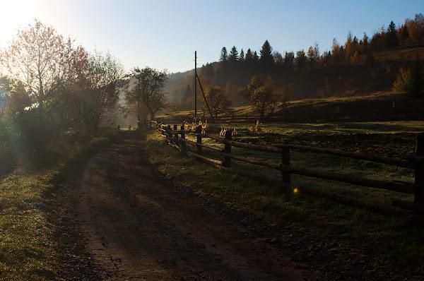 утро осень карпаты октябрь
