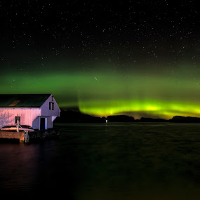 Nordlys by Janne Monsen - Landscapes Starscapes ( color, green, northern lights, nikon, norway )