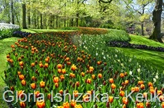 1 .Glória Ishizaka - Keukenhof 2015 - 40