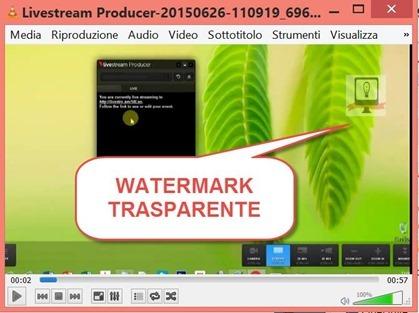 inserimento-logo-trasparente-video