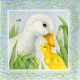 little_duck_lost_spd_main_image_7.jpg