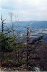 Massanutten Mountain, George Washington National Forest, Virginia, in Wintertime.