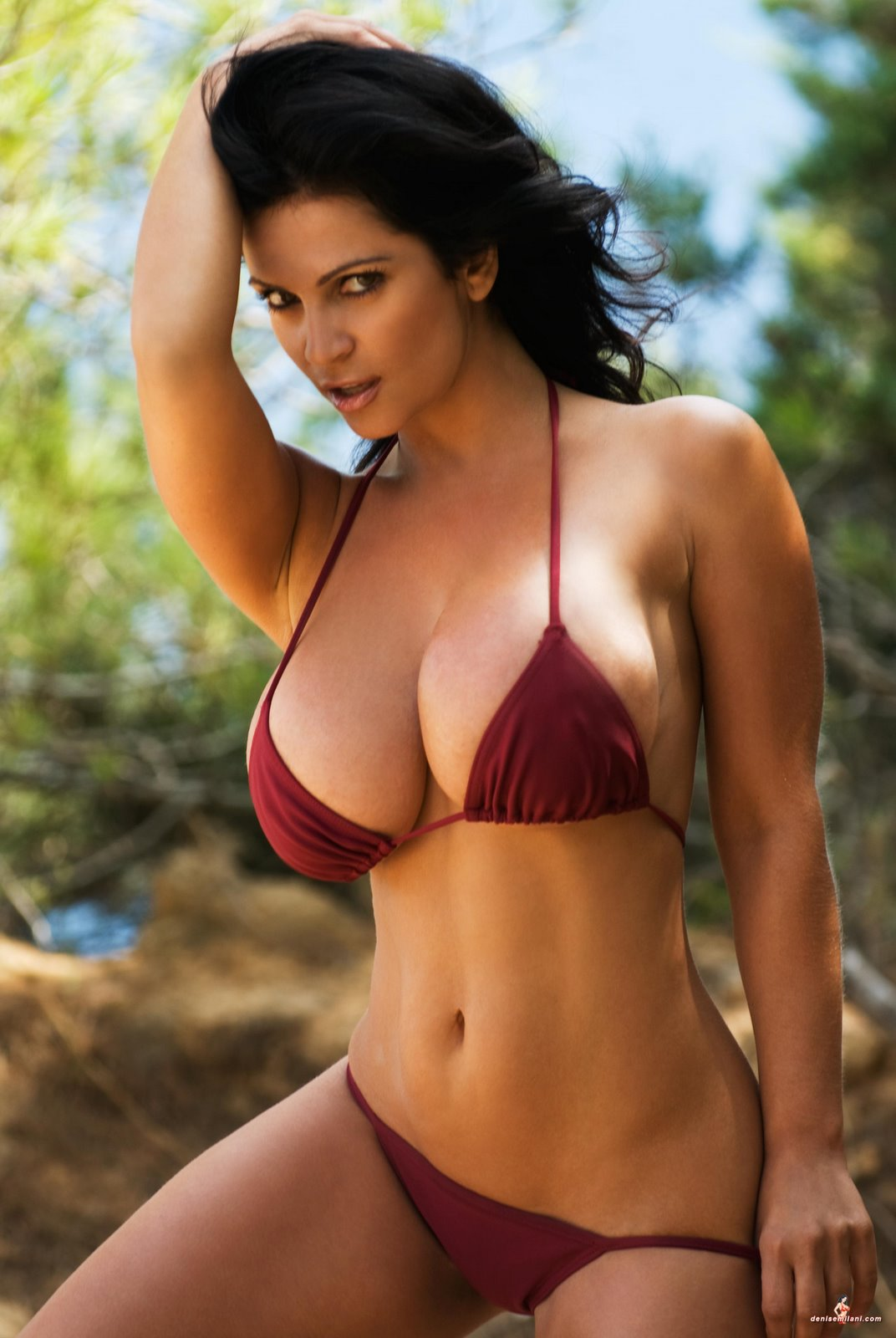 PhimVu Blog: Denise Milani burgundy