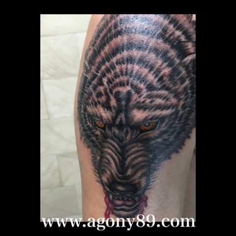タトゥー画像、ブラック アンド グレー タトゥーデザイン、狼、オオカミ、ウルフ、wolf、顔、剥製、a&e、ロゴ、ロゴマーク、刺青デザイン画像、タトゥーデザイン画像、タトゥースタジオ アゴニー アンド エクスタシー、初代彫迫、ブログ、ほりはく日記、刺青 彫迫、http://horihaku.blogspot.com/