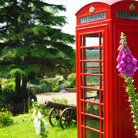When Nature Calls  by Andy Walker - Nature Up Close Gardens & Produce ( statue, tree, british, garden, flower, phonebox, cannon )
