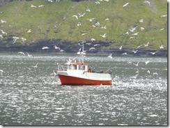 Hattarvík 010