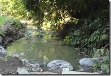 Lago di liquami a Giugliano