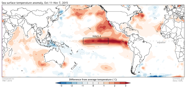 Average sea surface temperature departure from the 1981-2010 average over the four weeks ending on 7 November 2015. Data are from NCEP-NCAR reanalysis. Graphic: climate.gov