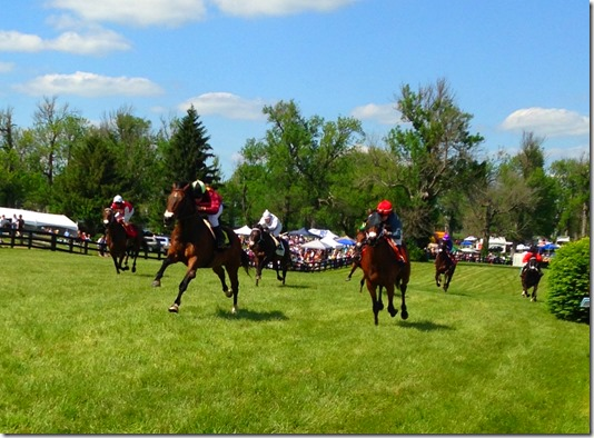High Hope Steeplechase 2014 | Photo | FLAIR Nasal Strips