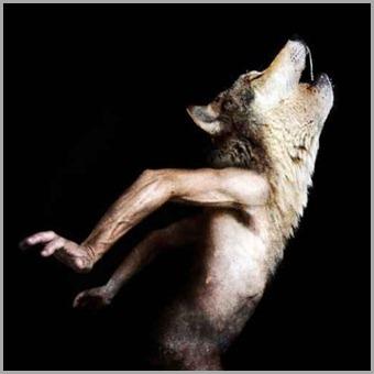 hibrido-homem-lobo