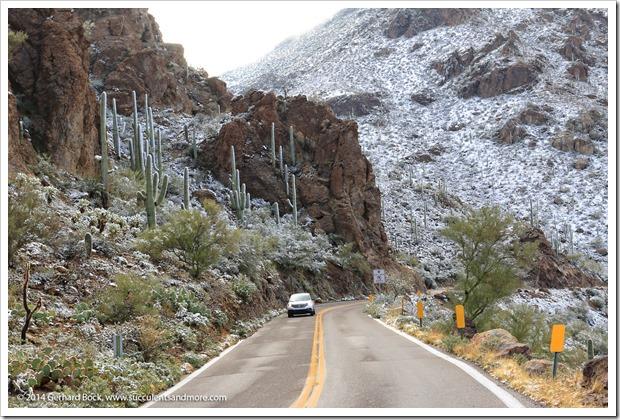 150101_TucsonMtPark_0092